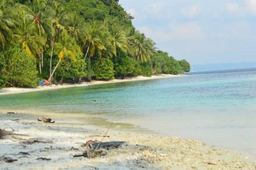 Coastal Marine Ecosystems