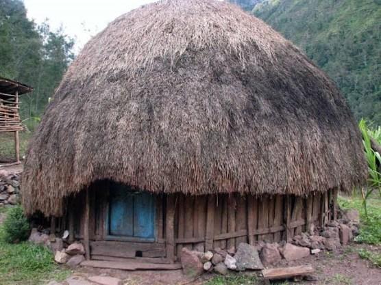 rumah adat Papua Honai
