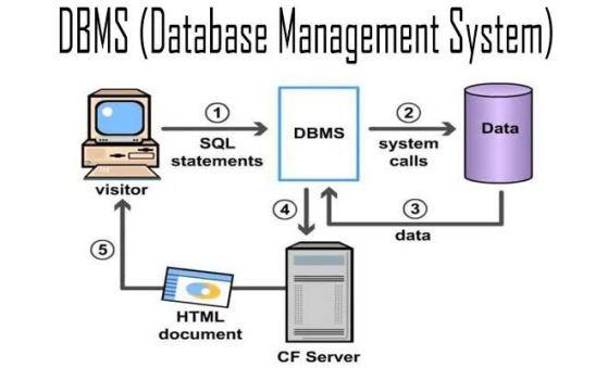 Pengertian Microsoft SQL Server dan Fungsinya