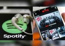 Akun Premium Ilegal Netflix dan Spotify
