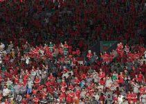 Penonton Virtual Fifa