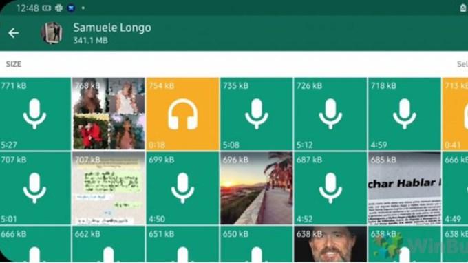 Fitur Whatsapp Storage Baru