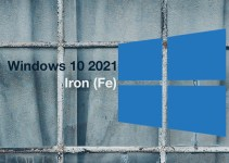 Pembaruan Windows 10 21H1 Iron Fe