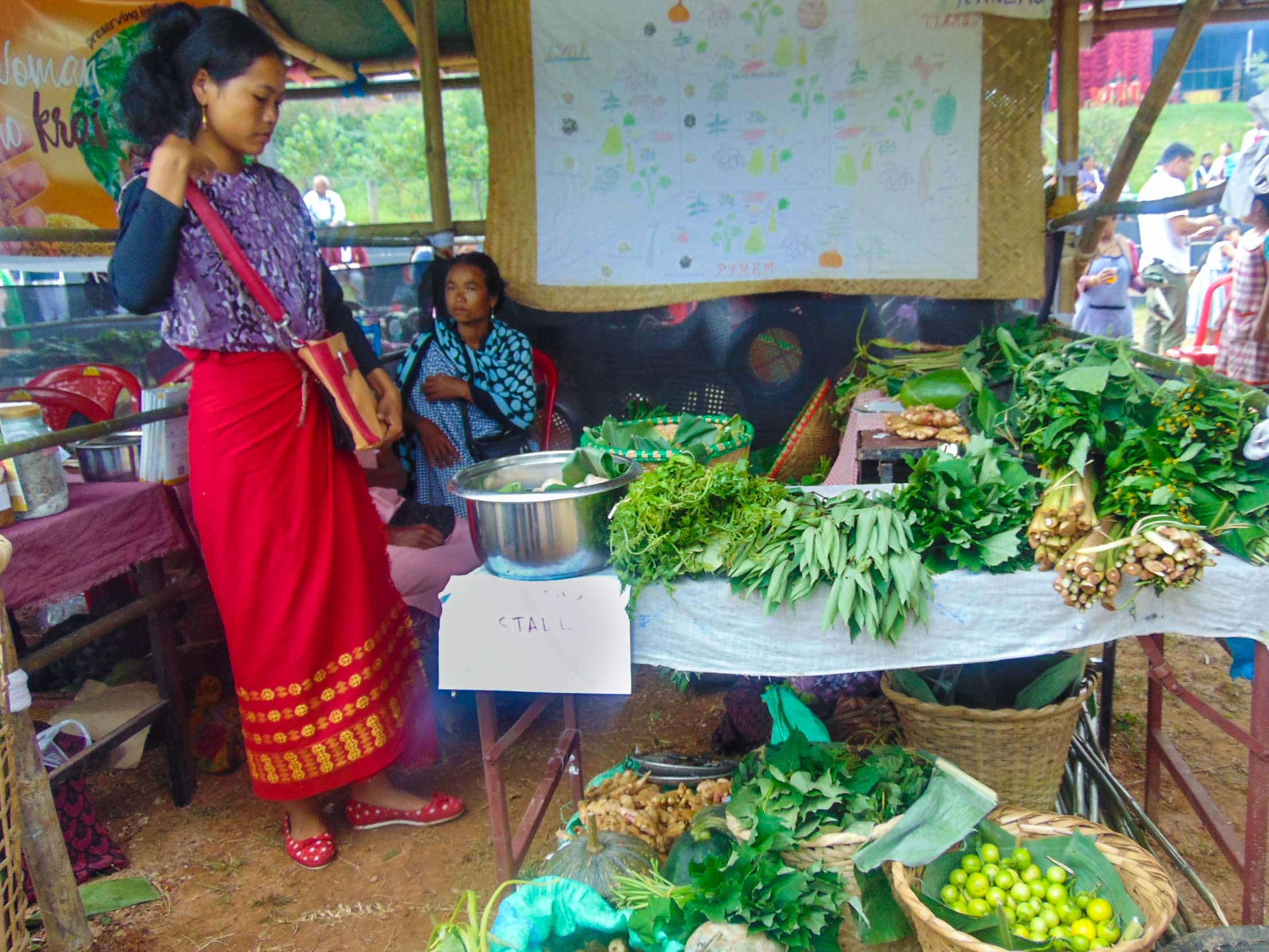 Wild Edibles and Shifting Cultivation products on sale
