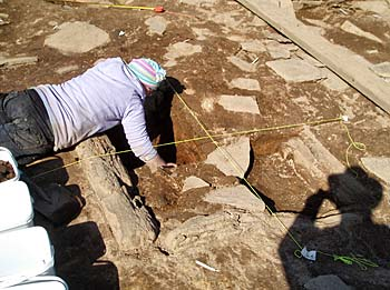 Sarah almost reaches the bottom of the ash deposits within the hearth in Structure 10.