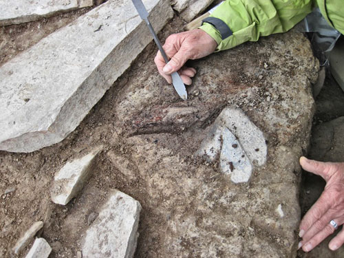 Alison carefully reveals the wood smear from under the north-east buttress of Structure Ten.