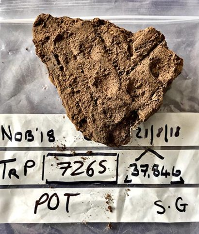 Figure 1: One of the two beautiful pieces of pottery recovered from Structure Thirty today.