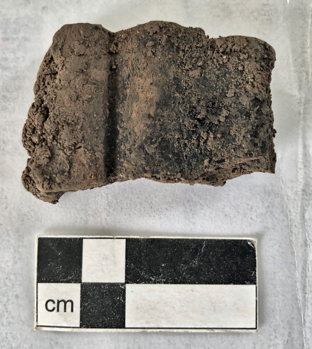 Pottery sherd recovered from the blocking layers outside the entrance to Structure Twelve.