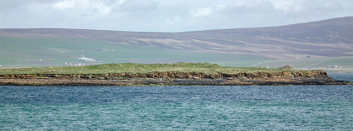 A suspected long cairn on the Outer Holm, Stromness, Orkney. (Sigurd Towrie)