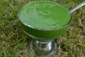green smoothie sorbet