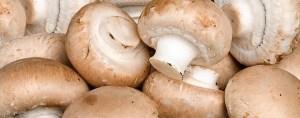 mushrooms for vegan vitamin D