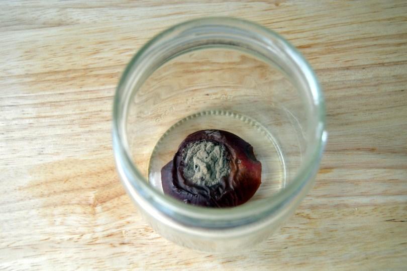 jam jar for chemical free DIY fruit fly trap