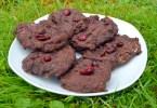 4 Ingredient Chocolate Cranberry Cookies Recipe