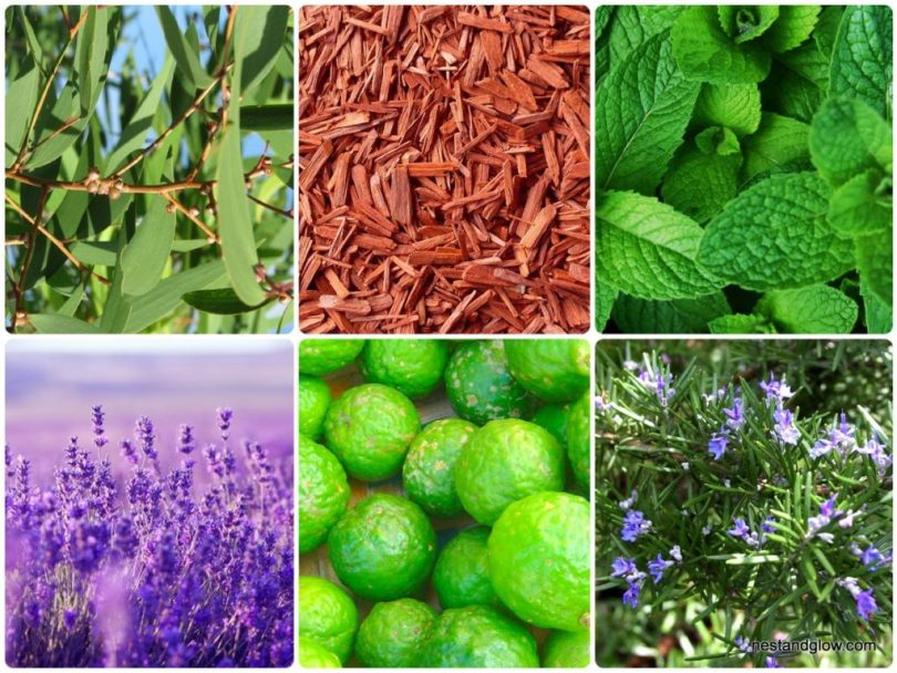types of essential oils