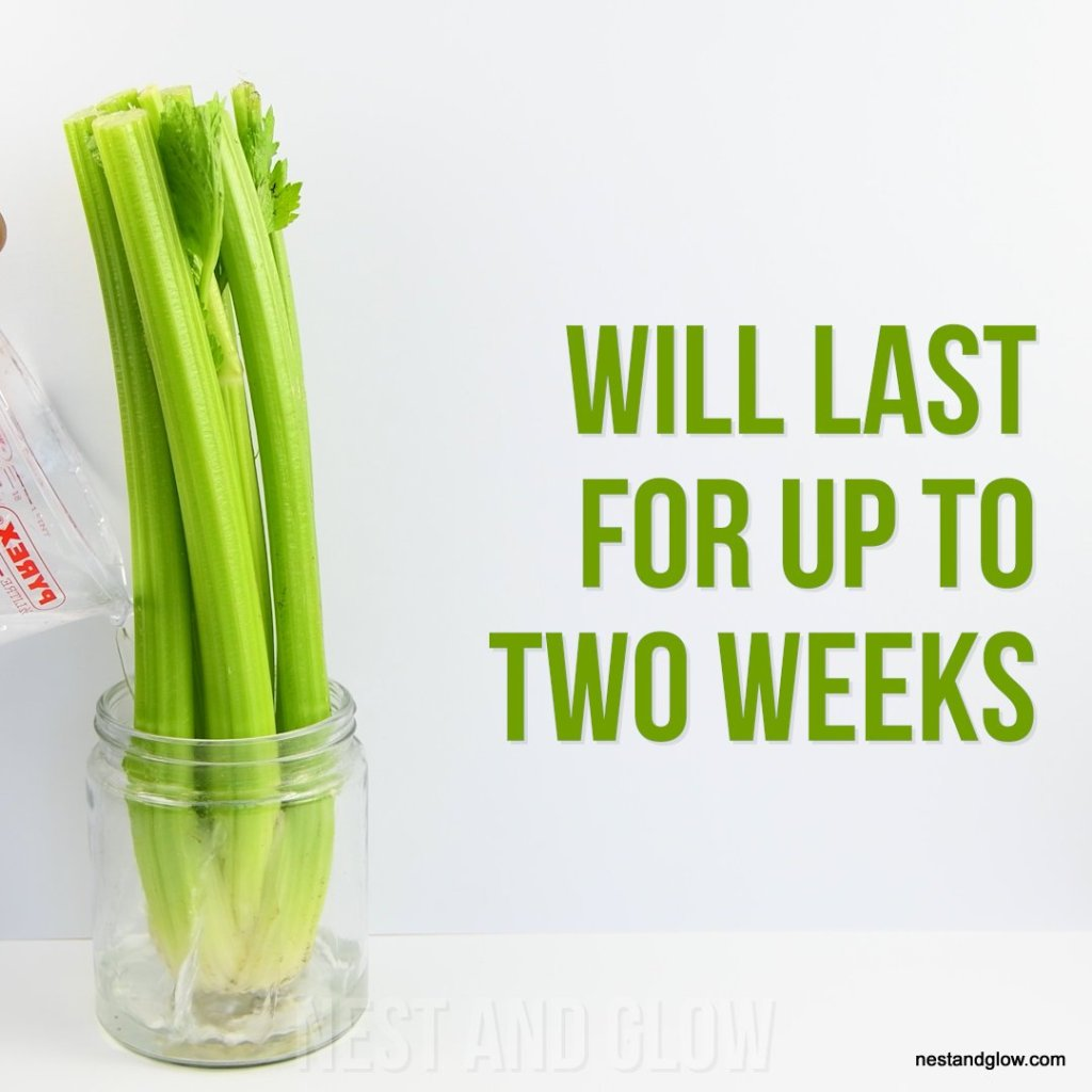 keep celery fresh for two weeks