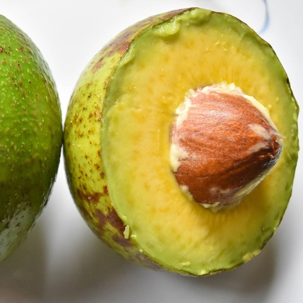 avocado facts questions and answers