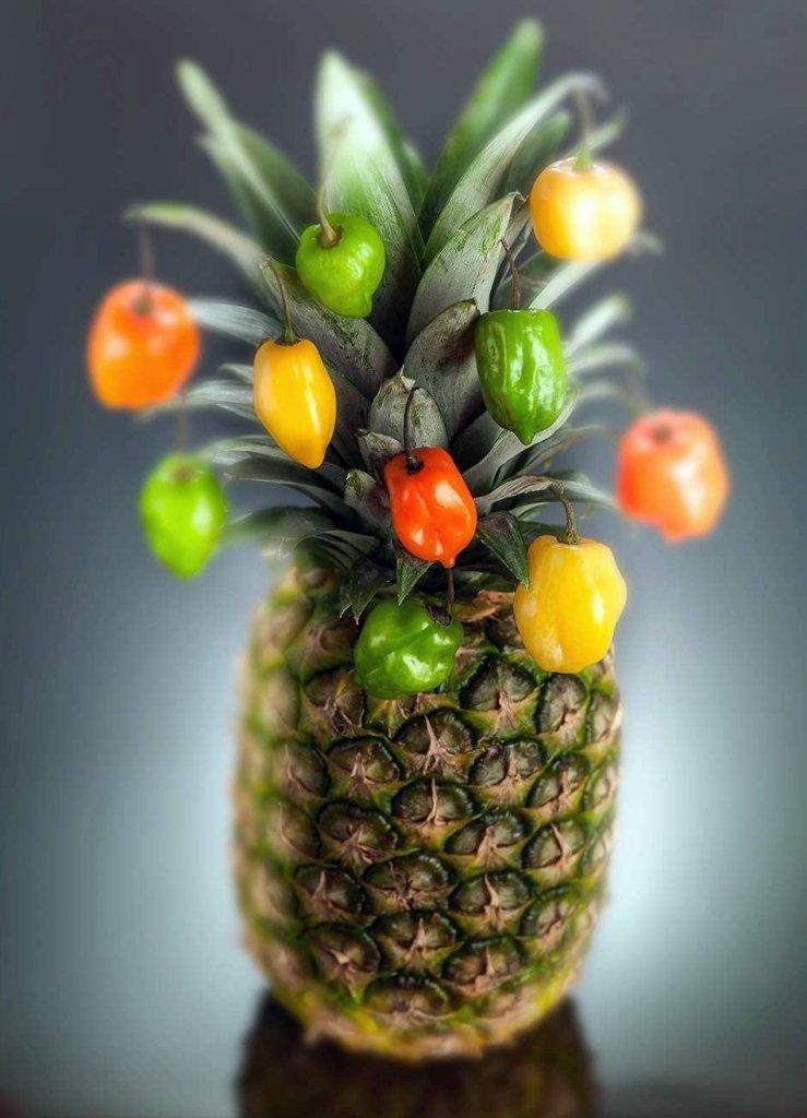 pineapple free fruit