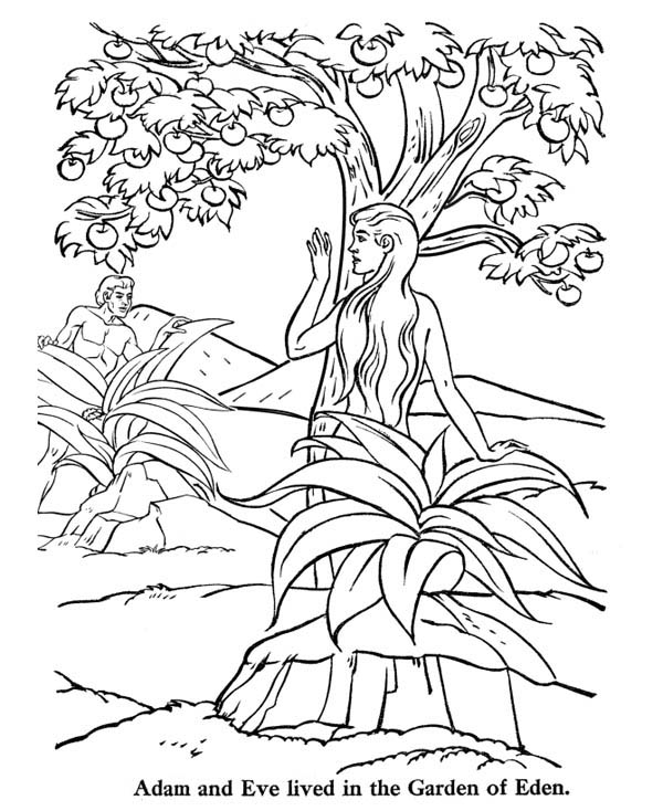 Free adam eve animals coloring pages