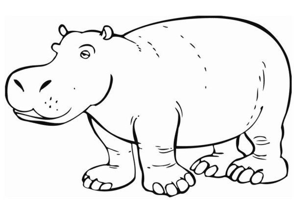 est hippo Colouring Pages