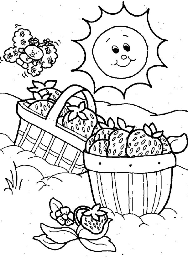 Chicken Egg In A Basket Coloring Pages