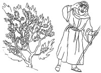 Burning Bush Pencil Coloring Pages