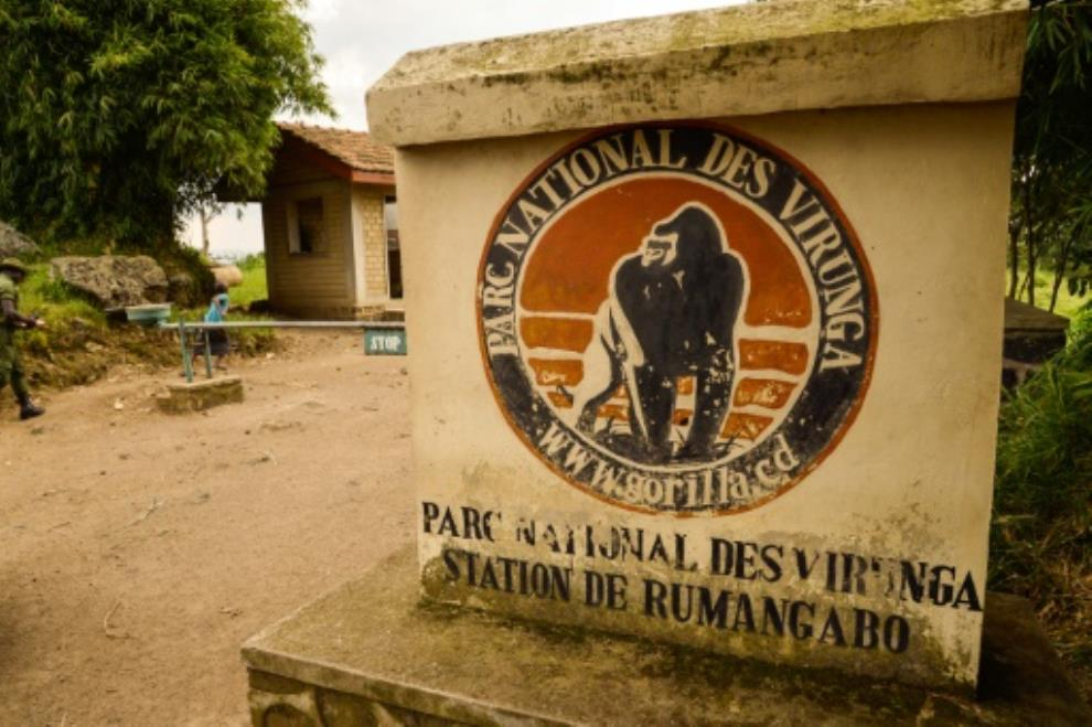 DR Congo planning to allow oil exploration in national parks: NGO