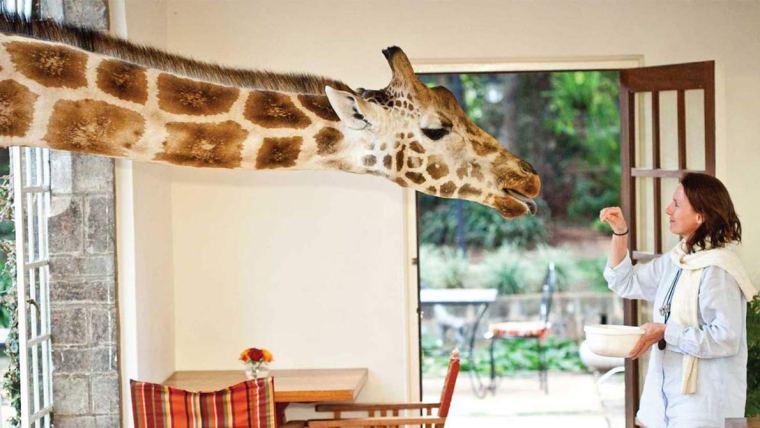 Big wins and magical destinations in Kenya
