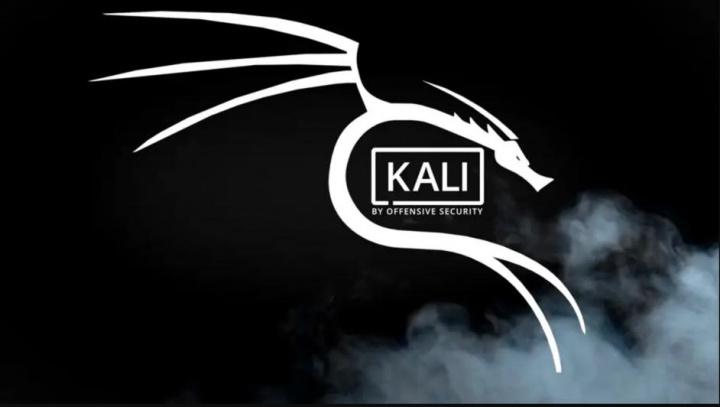 ¡Kali Linux 2021.2 ya está aquí!  Kaboxer, Kali-Tweaks y más