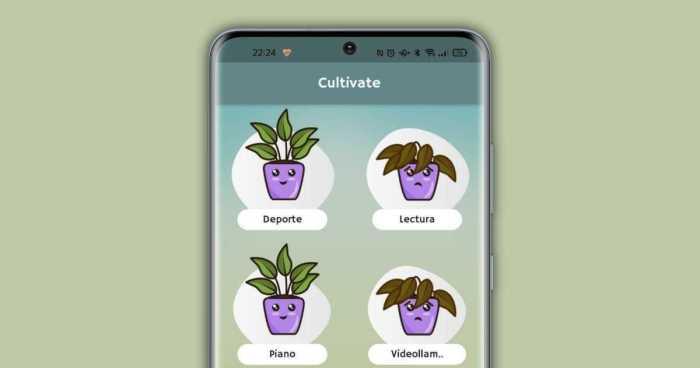 Cultivar la aplicación