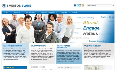 Consulting web site