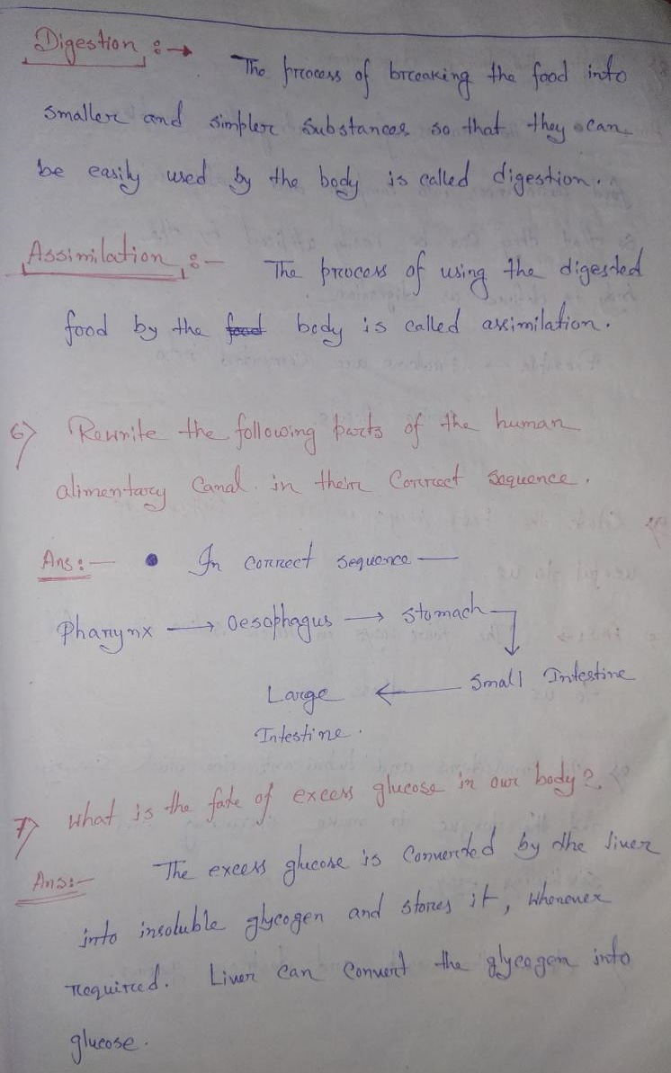 hight resolution of Selina Concise Class 6 Biology Chapter 4 Digestive System Solution