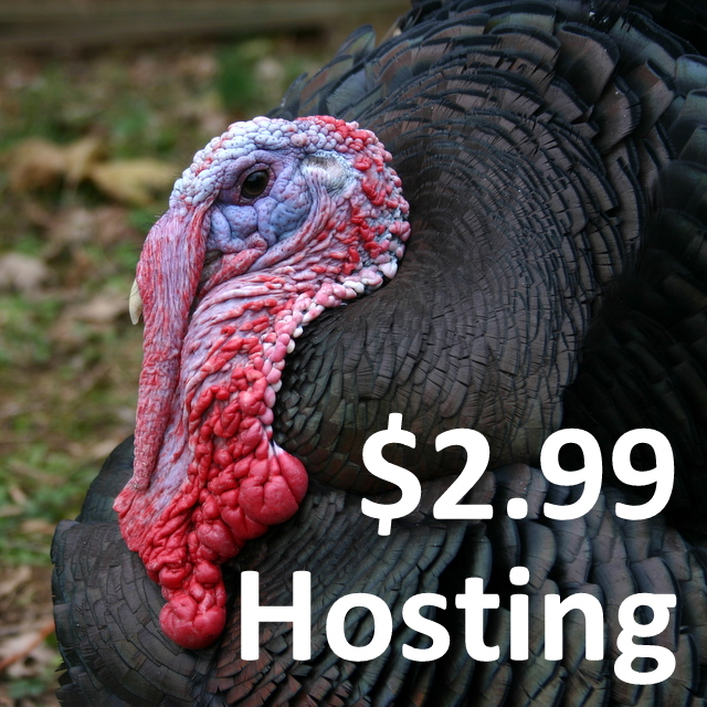 Website Hosting Only $2.99 a Month
