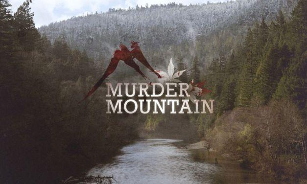 """Murder Mountain : quand le marché de la marijuana est """"tout sauf relaxant"""""""