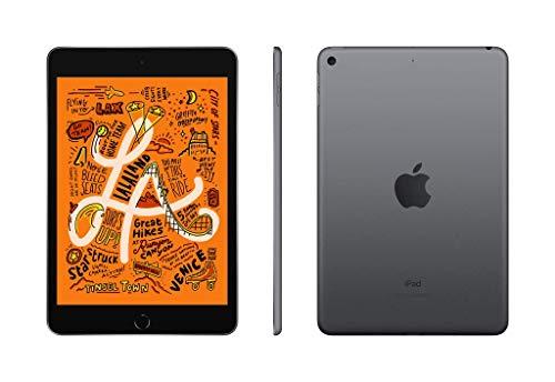 iPad-mini-Wi-Fi-64GB-Gris-sidral-0-3