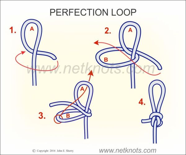 Perfection Loop How to tie a Perfection Loop Fishing Knots