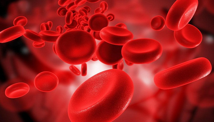 flowing-red-blood-cells