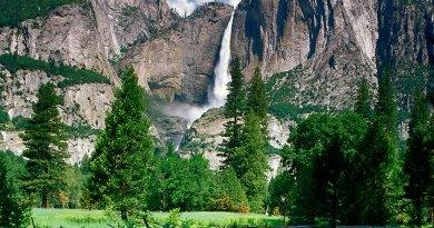 Yosemite National Park expectations- Netmarkers