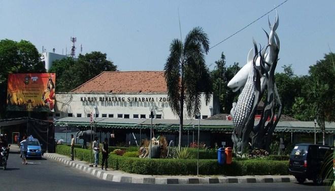 surabaya zoo-Netmarkers