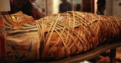 Egyptian Mummies -Netmarkers