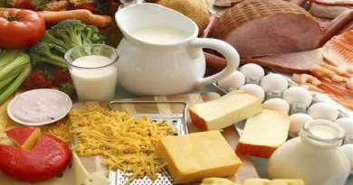 Protein-diet-Netmarkers