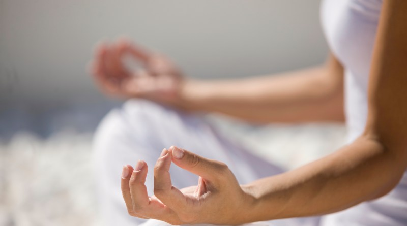 Trending facts about Yoga- Netmarkers