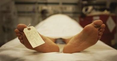 Viral Murder Mystery- Netmarkers