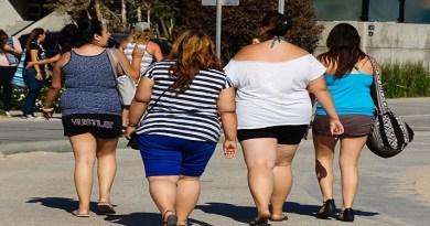 shorts-Netmarkers