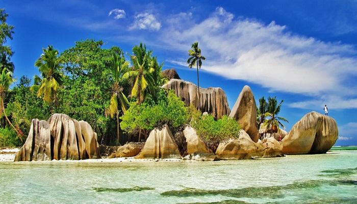 Seychelles-Netmarkers