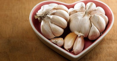 benefits-Garlic-and-Cardiovascular-Disease-Netmarkers