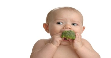 baby-eating-broccoli-netmarkers
