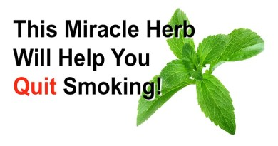 herb-that-destroys-the-urge-for-nicotine-netmarkers
