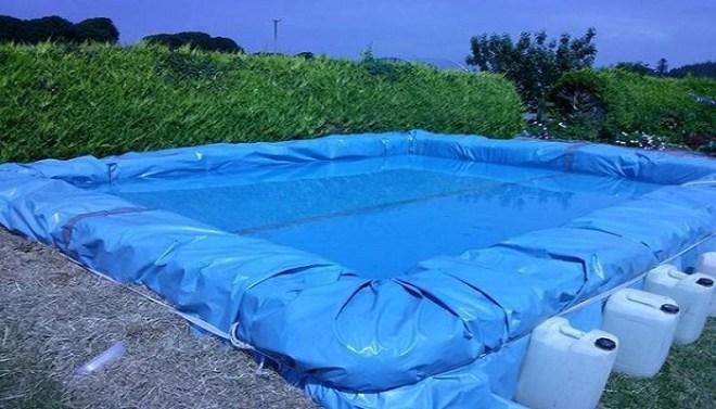 2x4s pool-Netmarkers