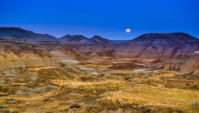 Dinosaur Provincial Park netmarkers