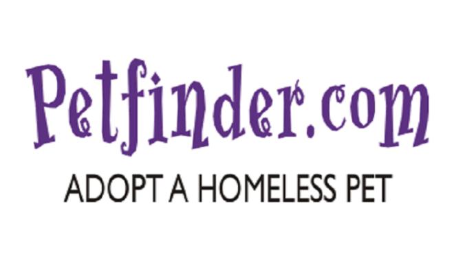 Petfinder-netmarkers